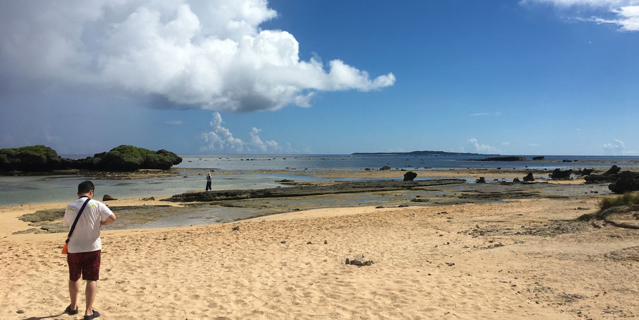 西表島・ガイドにおまかせツアー【星砂の浜☆マングローブカヌー&滝遊び+由布島】