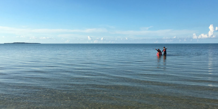 西表島・ガイドにおまかせツアー【マングローブカヌー&滝遊び+シーカヤック】