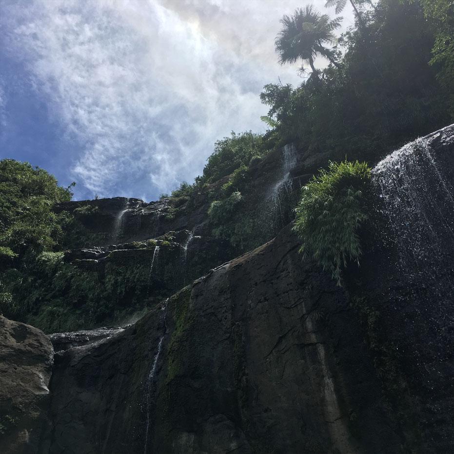 西表島・ガイドにおまかせツアー【ジャングルトレッキングde滝あそび】