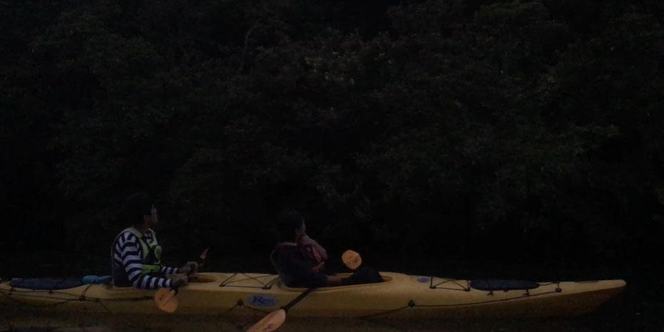 西表島・早朝カヌー/カヤックツアー【早朝カヌー&サガリバナ】