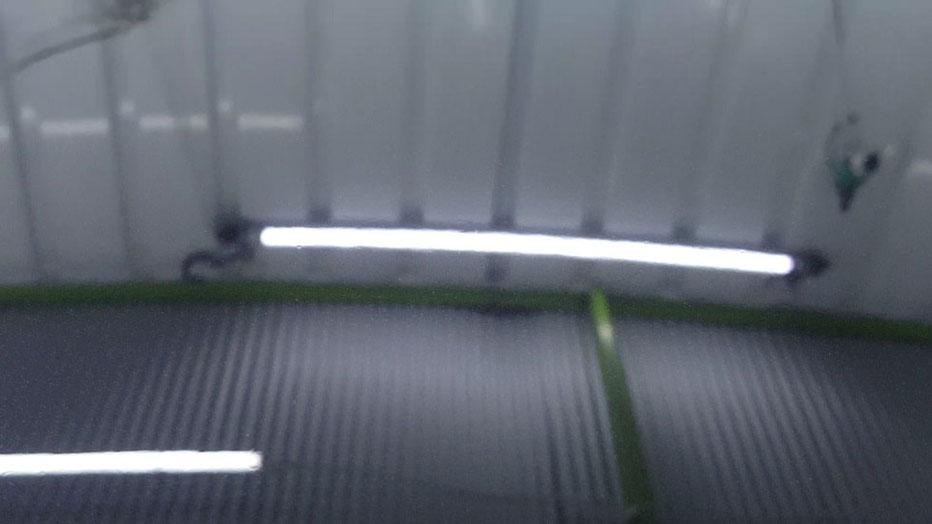 996ターボHPE クレーター改善 花粉シミ除去 埼玉の車磨き専門店