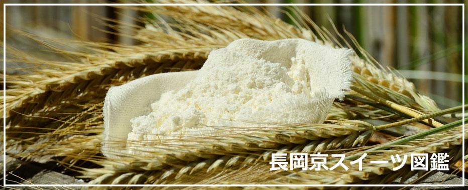 小麦粉のイメージ画像