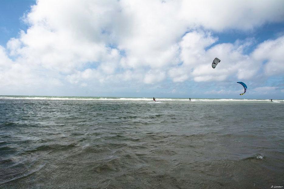 Kite D7-14_011R
