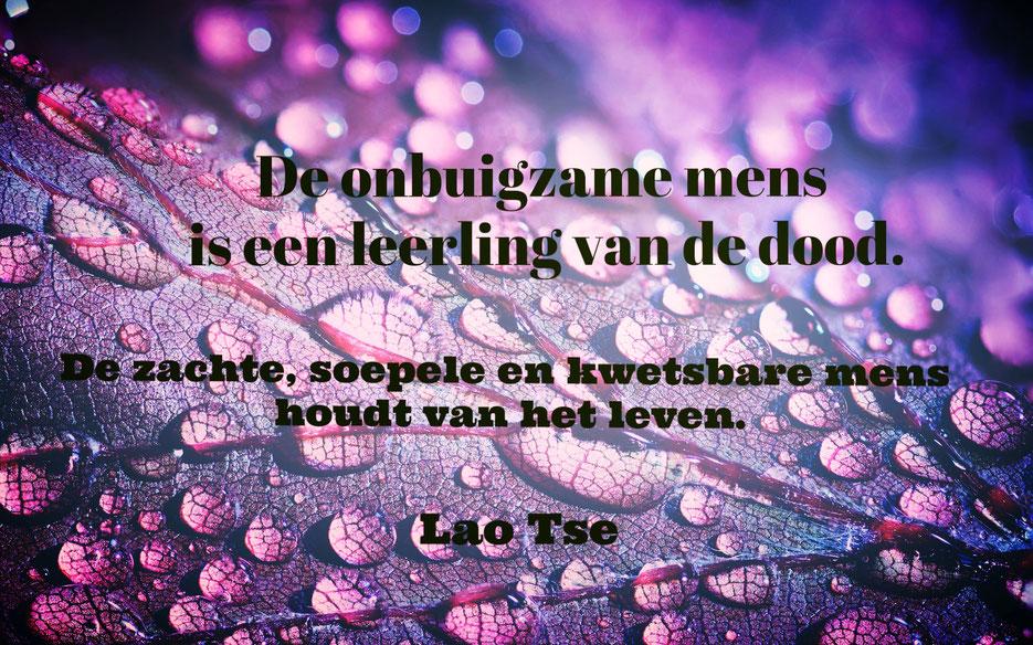 Citaat Lao Tse