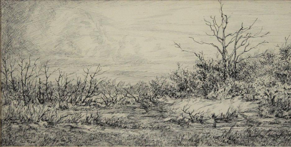 te_koop_aangeboden_een_inkttekening_van_de_nederlandse_kunstenaar_ton_pape_1916-2003_hollandse_school