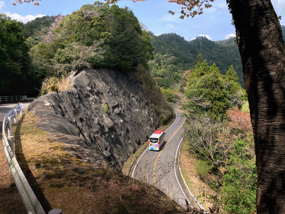 標高695mの鳳来寺山の中腹をはしる鳳来寺山パークウェイ