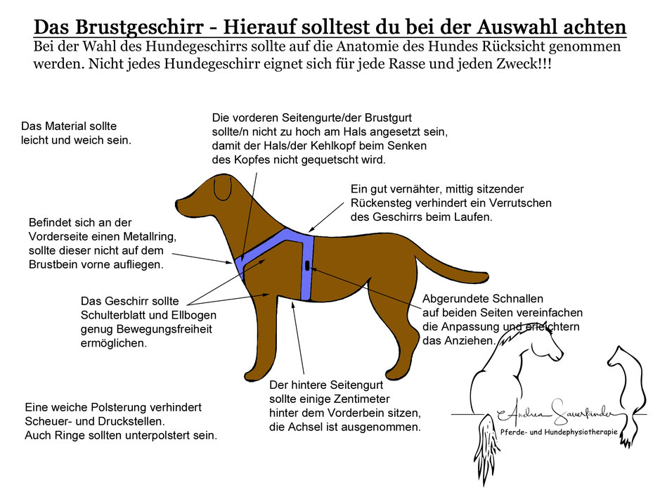 Übersichtstafel: Hundegeschirr - Andrea Sauerländer ...