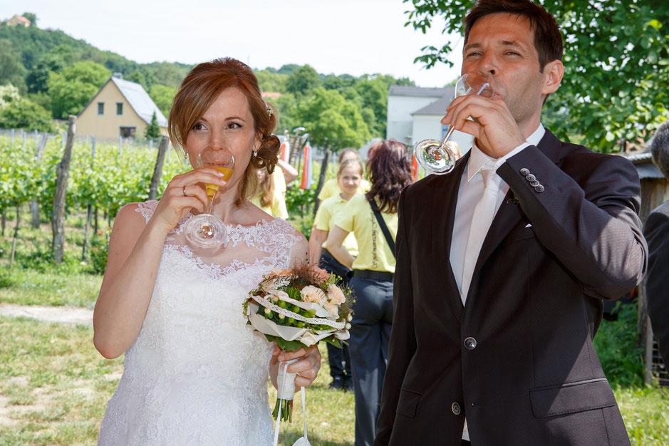 Hochzeitsfotograf Dresden, Hochzeit Hoflößnitz, Hoflößnitz Hochzeit, Standesamt Schloss Hoflößnitz, Fotograf Hochzeit Dresden, Hochzeit Hoflößnitz Radebeul, Hochzeit Hoflößnitz, Hochzeit in Dresden, Heiraten in Dresden, heiraten auf Schloss Hoflößnitz