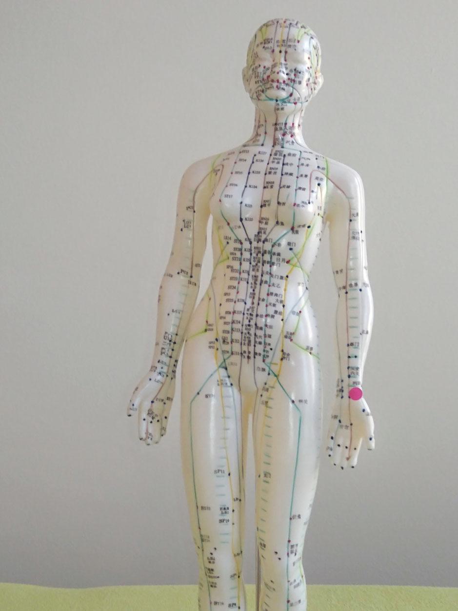 Therapie und Behandlung von COPD, Asthma, Bronchitis, Heuschnupfen, PAVK und Durchblutungsstörungen in Nürnberg durch Heilpraktiker Trojahn
