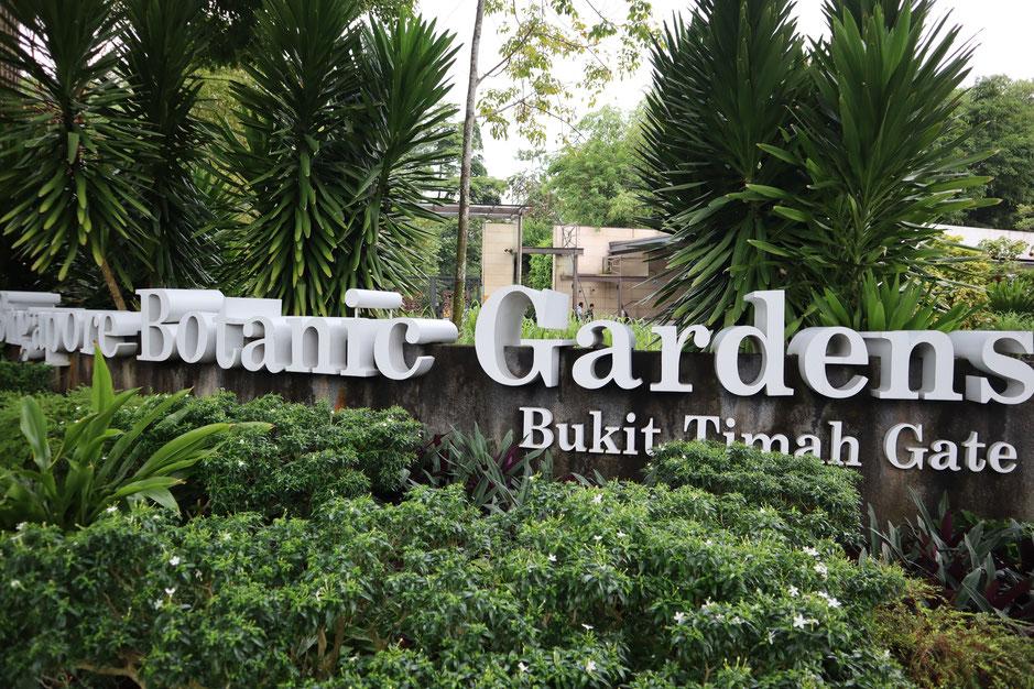 シンガポール植物園 2018年9月