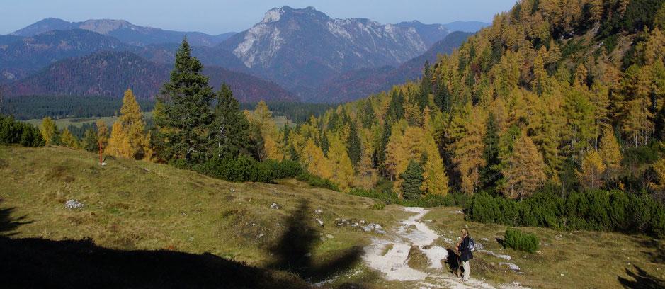 Wandern Fellhorn - Chiemgauer Alpen - vegansports fit & healthy