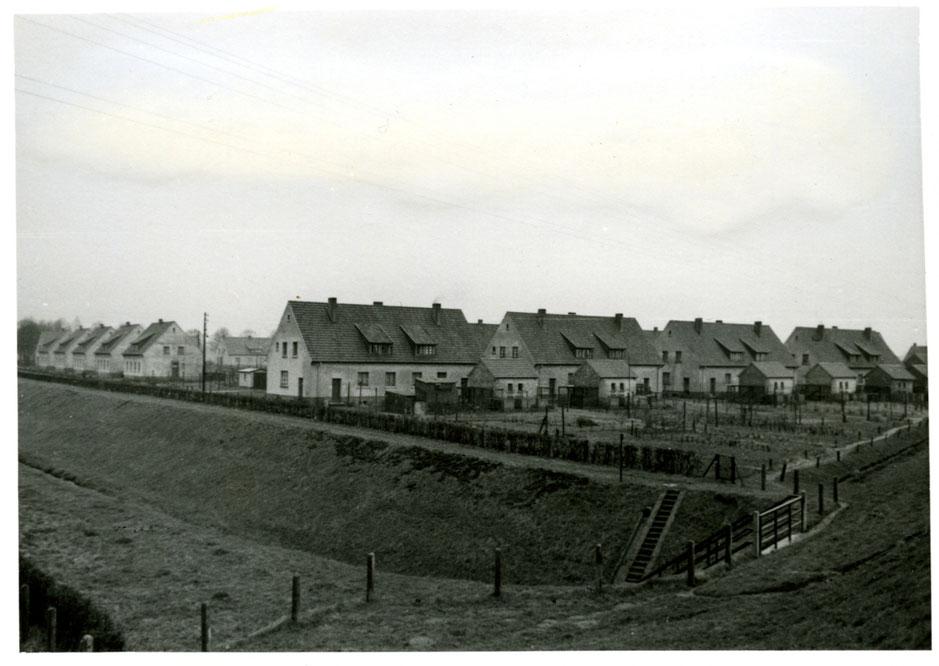 Böggefeld-Siedlung in Rünthe Anfang der 1950er Jahre.