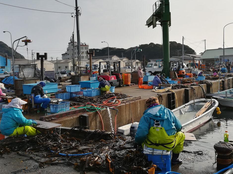 港で作業する人々