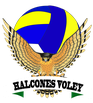 HALCONES VOLEY