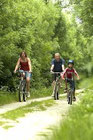 des cyclistes en VTT sur un sentier de Forêt