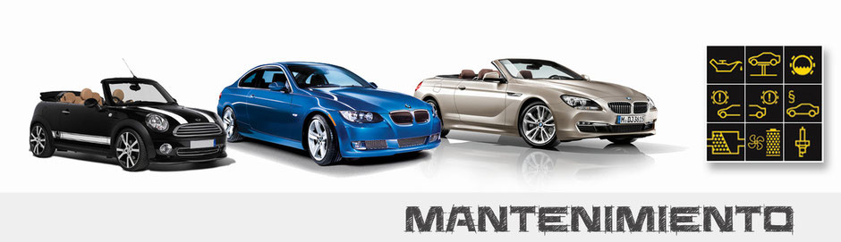 Mantenimiento, Revisión de vehículos BMW y MINI
