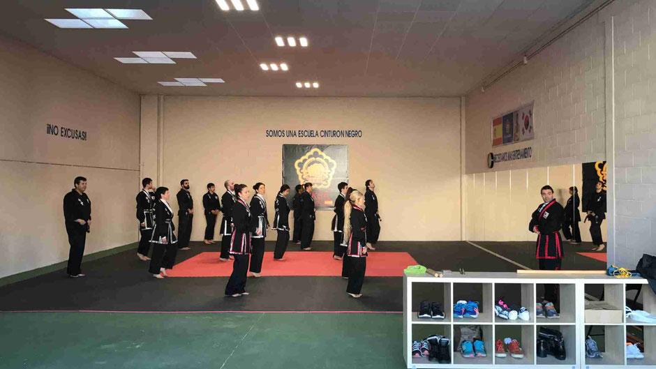 Artes marciales en Rivas