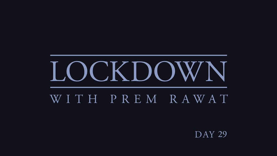 Lockdown Tag 29