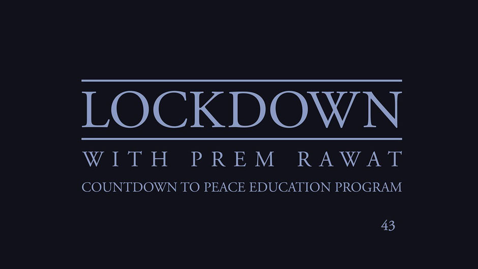 Lockdown Tag 43