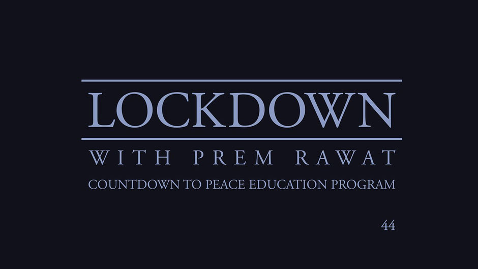 Lockdown Tag 44