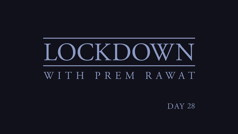 Lockdown Tag 28