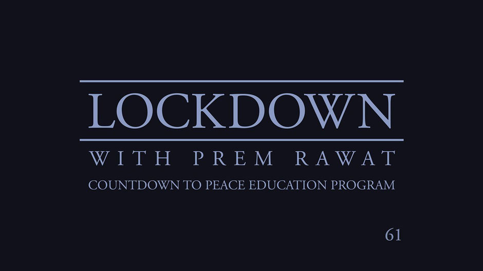 Lockdown Tag 61