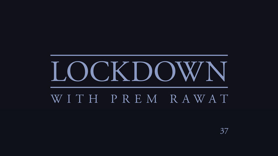 Lockdown Tag 37