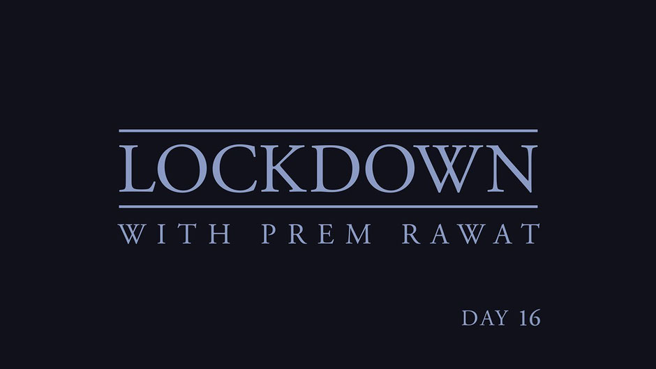 Lockdown Tag 16