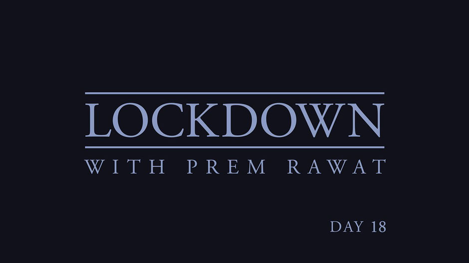 Lockdown Tag 18