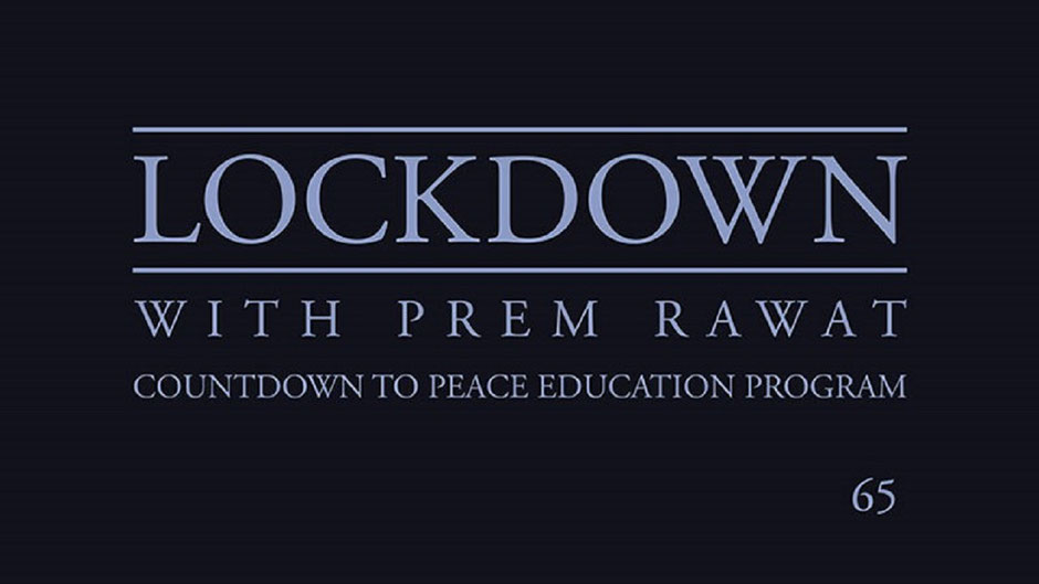 Lockdown Tag 65