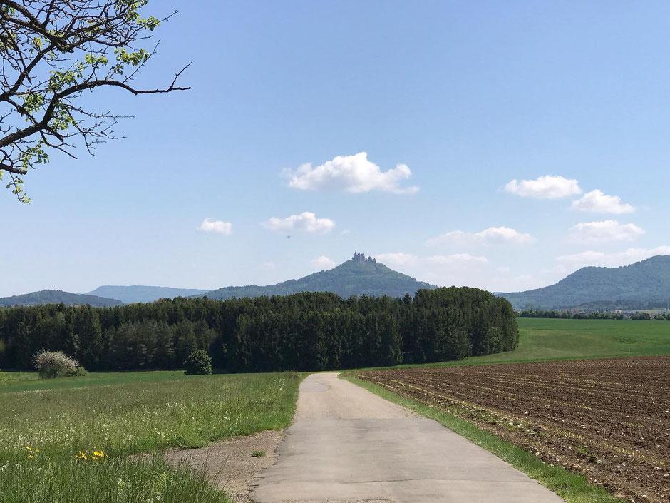 """""""Weitere Highlights im Mai waren dann der """"Ritt auf die Burg Hohenzollern"""" und eine weitere Bergetappe mit 190 KM - 3200 hm."""""""
