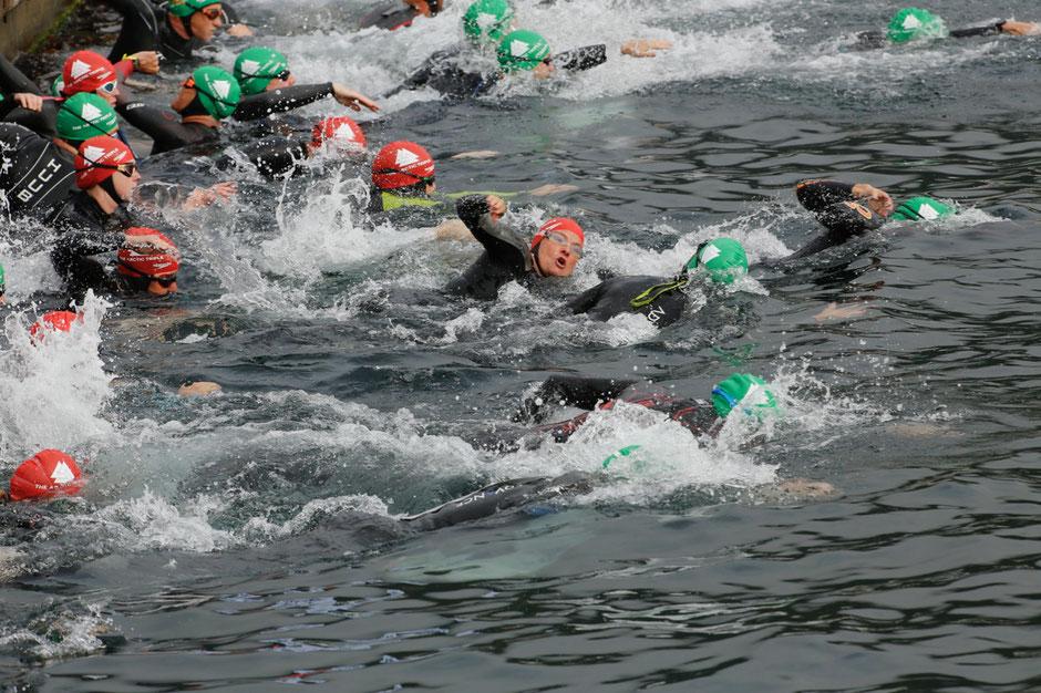 Mit 1000m startete das Schwimmen im wellenreichen Hafenbecken von Svolvaer.