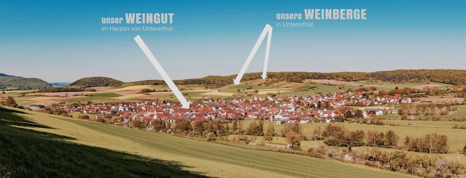 Untererthal • Frankens Saalestück • Weinberge • Franken