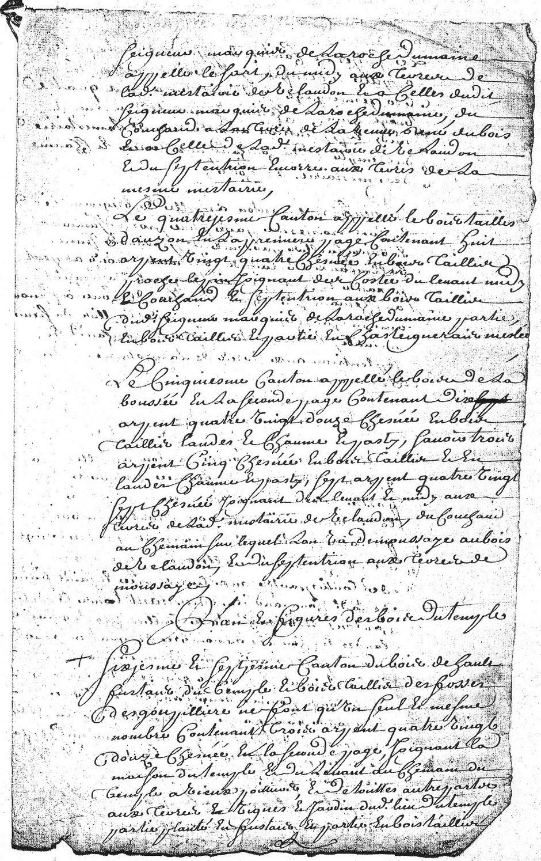 1729 - Plans des bois de la commanderie d'Auzon  - D'Allogny de la Groie Textes 4,5 et 6