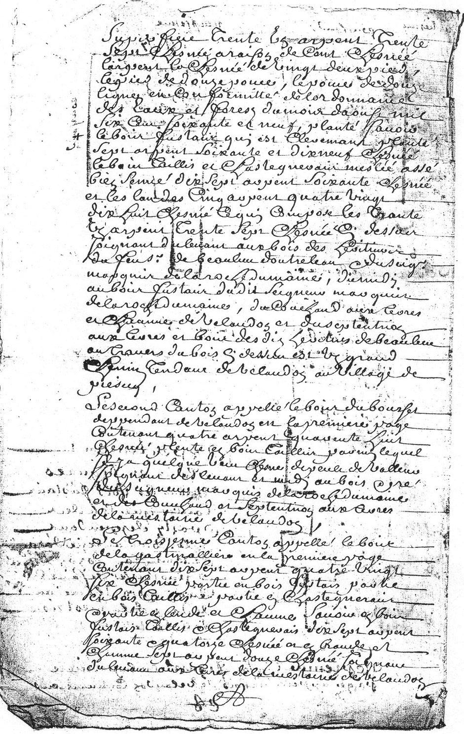 1729 - Plans des bois de la commanderie d'Auzon  - D'Allogny de la Groie Texte 1,2 et 3