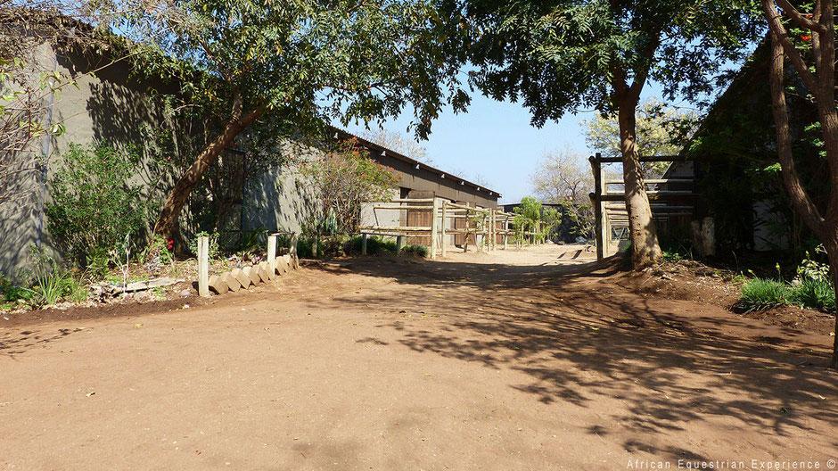 Paardenstallen buiten Zuid-Afrika