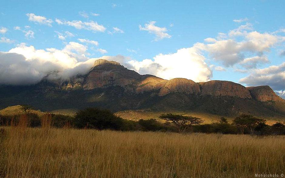 Drakensbergen in Zuid-Afrika bij project Moholoholo