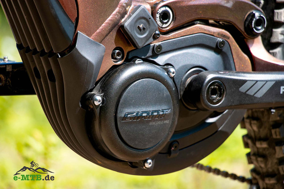 Der Giant SyncDrive Pro mit 80 Nm