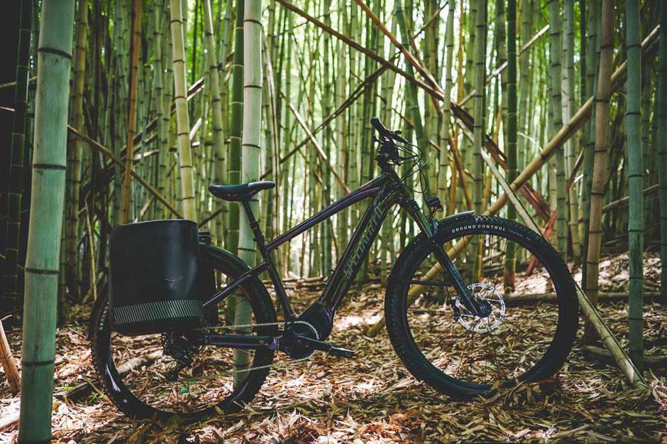 Specialized Turbo Tero e-Mountainbikes