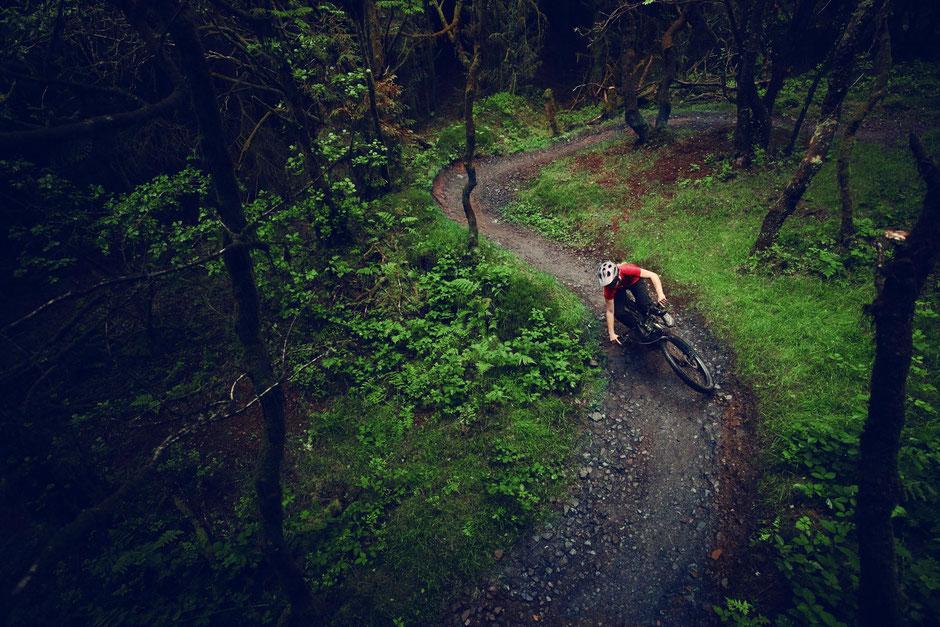 Das Cannondale Habit Neo im Einsatz auf dem Trail