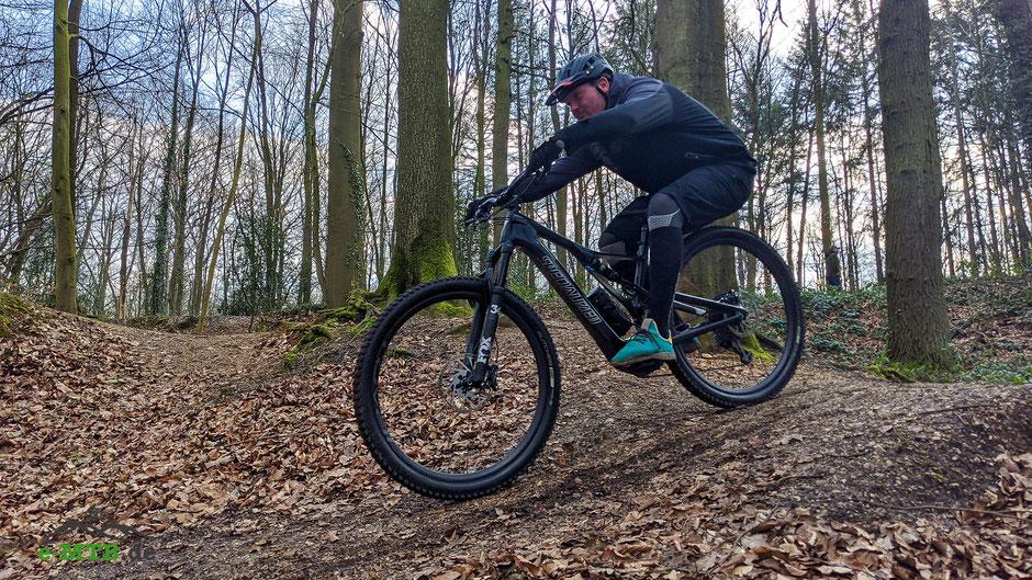 Mit dem top e-Mountainbike im Riese & Müller Delite Mountain Touring im Grünen