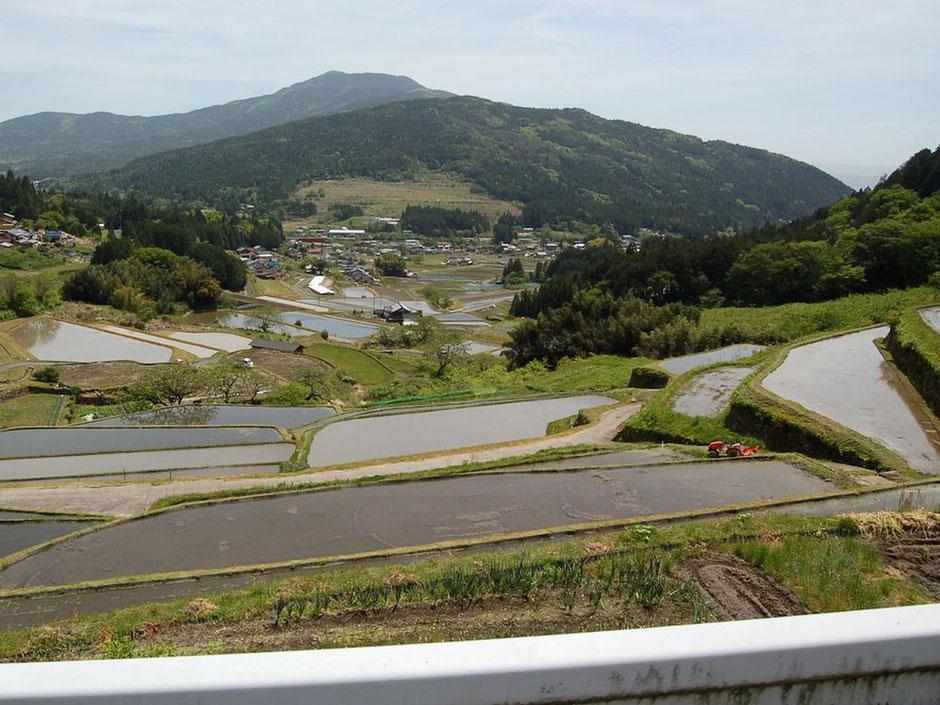 笠置山(かさぎやま)をバックに広がる坂折棚田。田植えは5/15頃から
