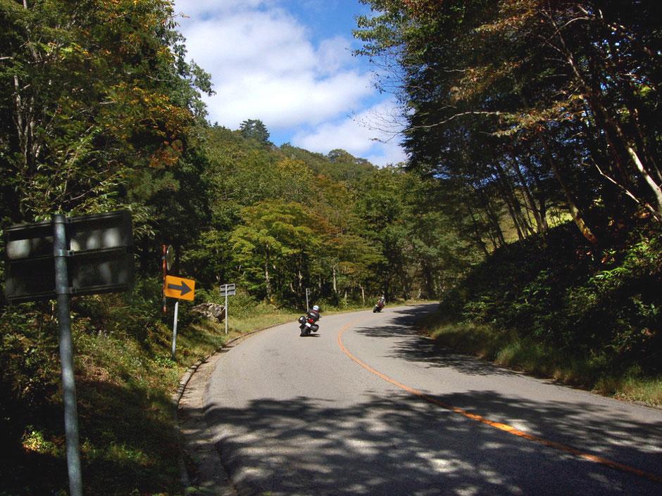 せせらぎ街道のこもれび広場辺りを走り抜ける。10月初旬では紅葉はまだ先