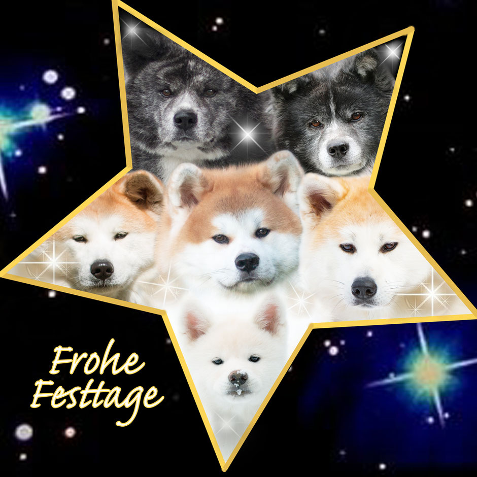 Frohe Festtage 2020
