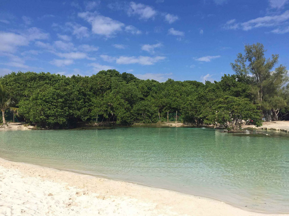Baby Friendly Beaches Around Playa Del Carmen - Punta Esmerelda - Freshwater Cenote on the Beach