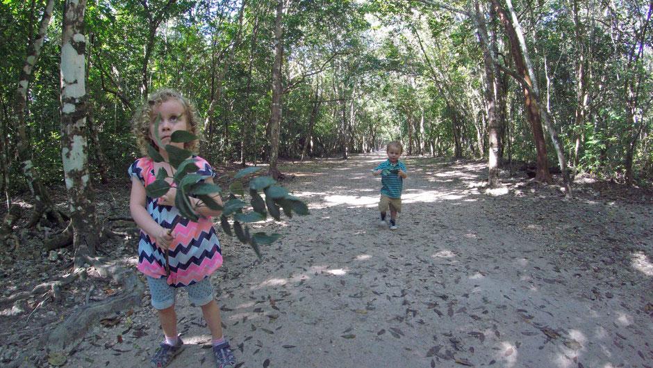 Coba Jungle Mexico Family Travel