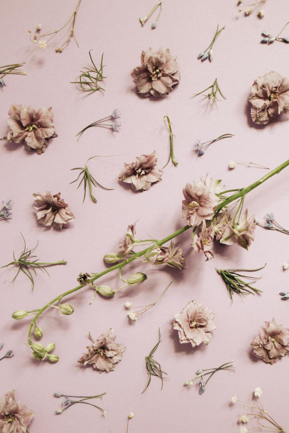 La cinquième Saison sélectionne ses fleurs, séchées et stabilisées, une à une, avec soin pour vous proposer des créations de grande qualité