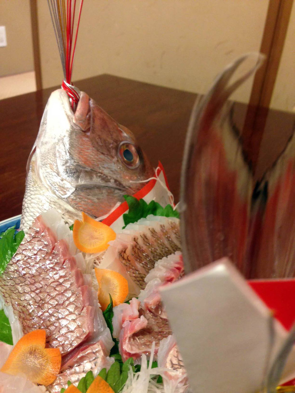 天然鯛1.2kg程度