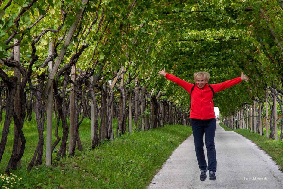 Pure Lebensfreude - an der schönen Weinstraße bei Kaltern in Südtirol.
