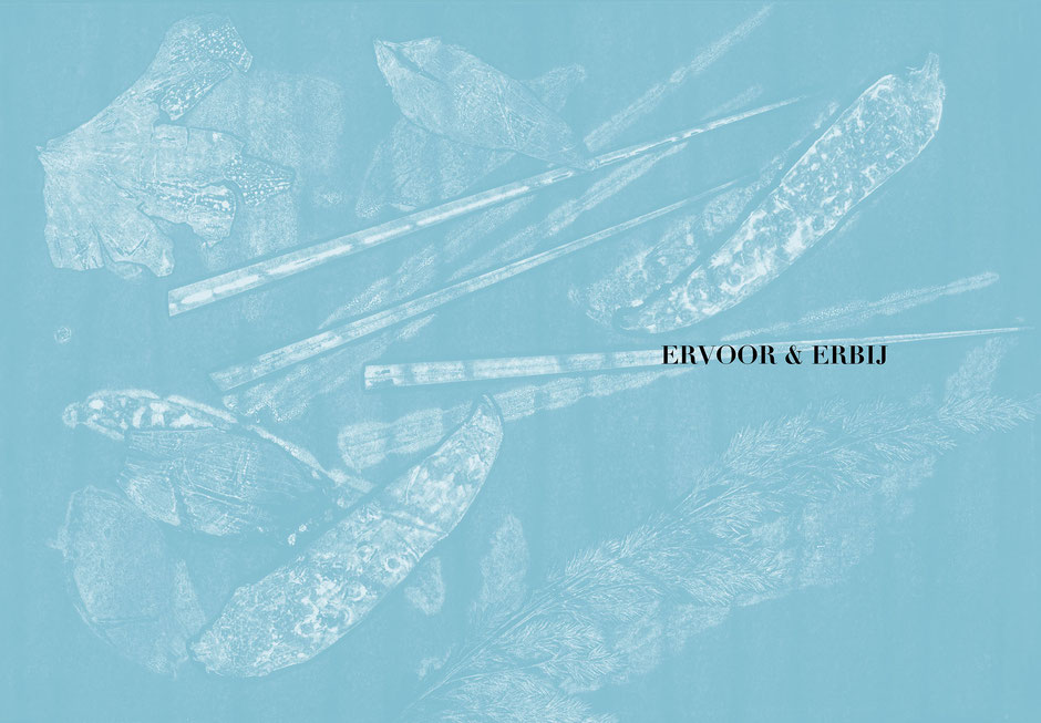 Book design and illustrations by Marijke Lucas - Lucas & Lucas for TERRA - Monoprint STARTERS